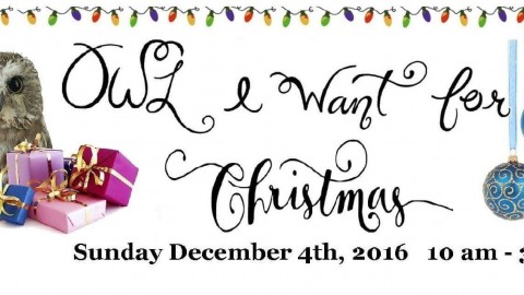 O.W.L. I Want for Christmas 2016