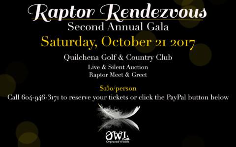 O.W.L.'s Second Annual Gala