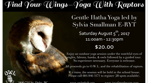 Yoga With Raptors – Find Your Wings 2017