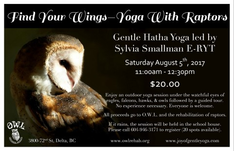 Yoga With Raptors – Find Your Wings