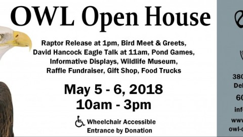 OWL Open House 2018