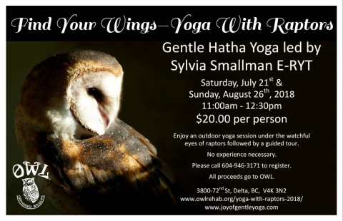 Find Your Wings – Yoga With Raptors 2018