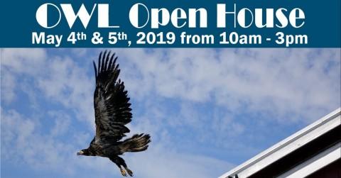 OWL Open House 2019