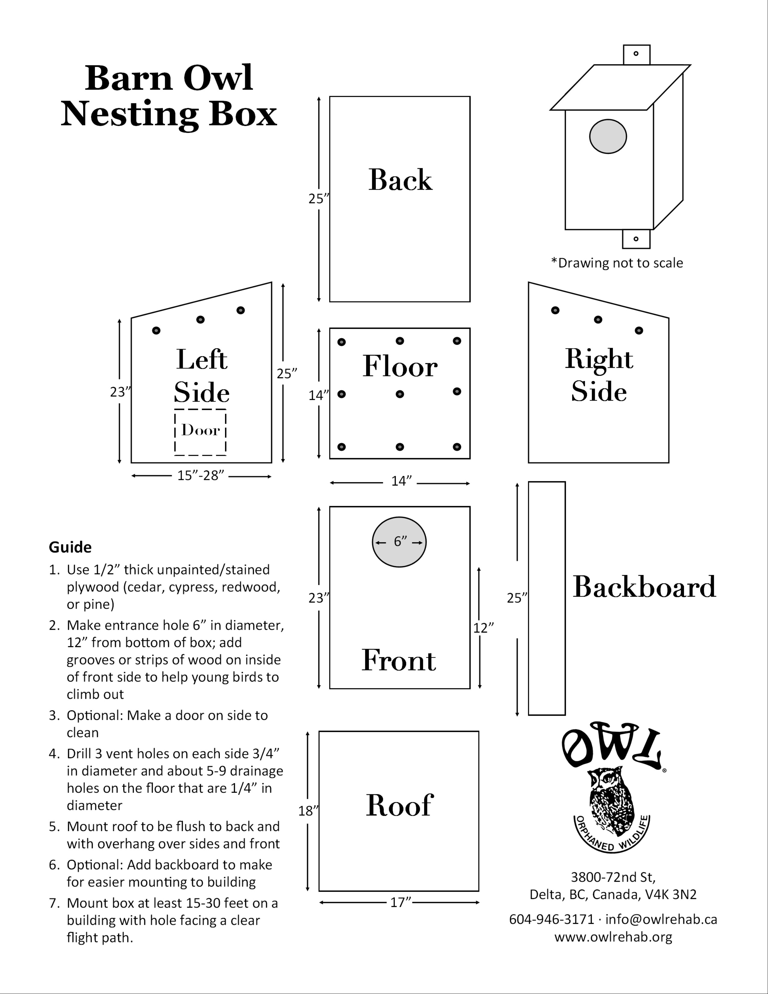 download a printable version of our barn owl box diagram