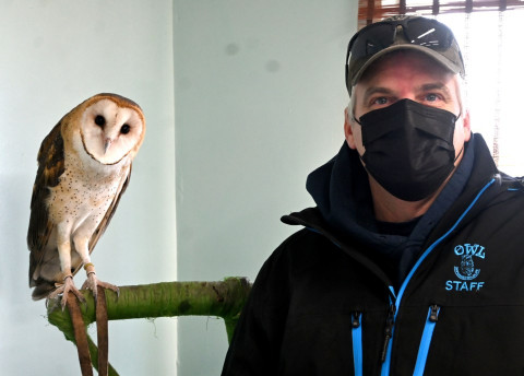 More respect for wildlife would mean less work for OWL